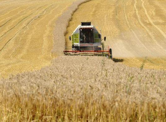 pesticidi agricoltura